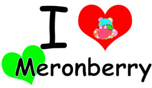 I LOVE Meronberry 小